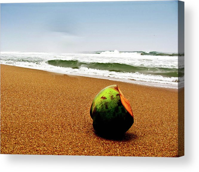 Tranquility Acrylic Print featuring the photograph Coconut On Sandy Beach With Waves And by Amlan Mathur