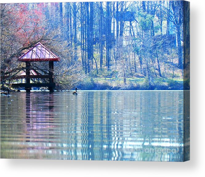 Landscape Acrylic Print featuring the photograph Dream Lake by Rrrose Pix