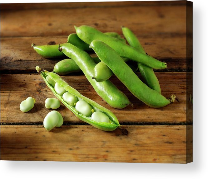 Healthy Eating Acrylic Print featuring the photograph Fresh Broad Beans In Their Pods by Paul Williams - Funkystock