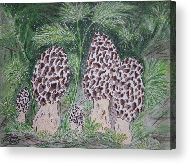 Morel Acrylic Print featuring the painting Morel Mushrooms by Kathy Marrs Chandler