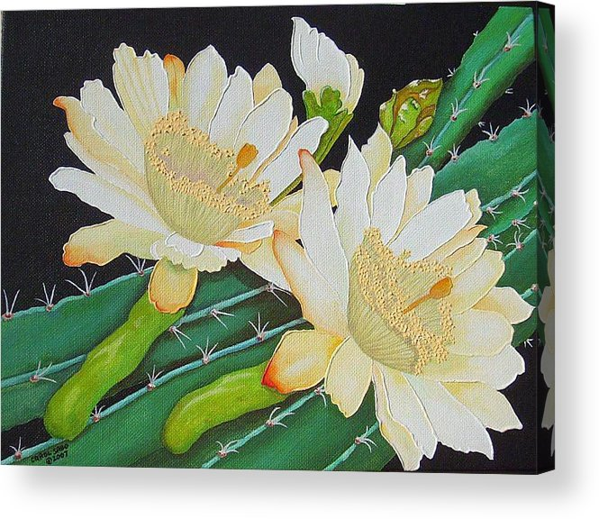 Acrylic Acrylic Print featuring the painting Night Blooming Cacti by Carol Sabo