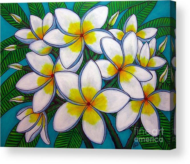 Frangipani Acrylic Print featuring the painting Caribbean Gems by Lisa Lorenz