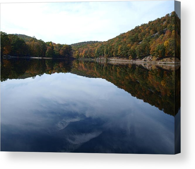 Blue Acrylic Print featuring the photograph Fall by Ellen Lewis