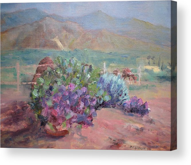 Anza Borrego Desert; Horses; Historical Mt. Landmark; Flowers Of The Desert-cactus Acrylic Print featuring the painting Anza Angel Cactus by Bryan Alexander