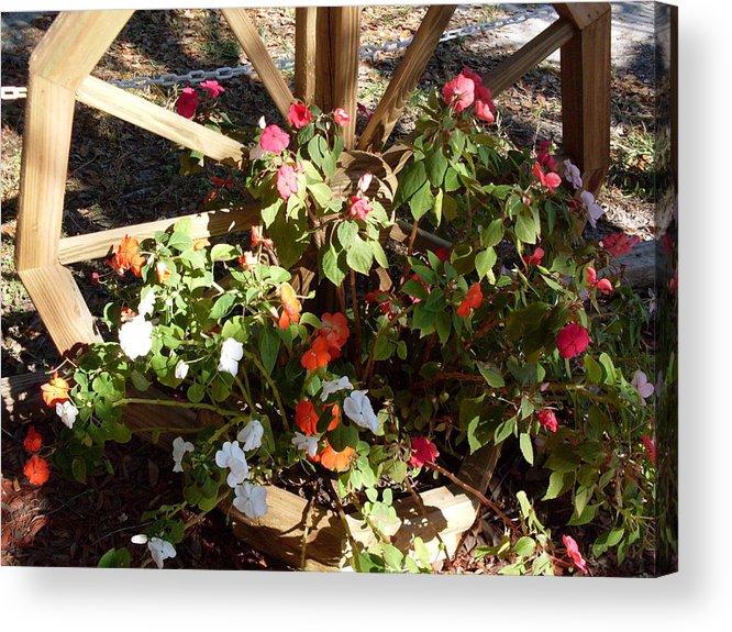 Flowers Landscape Acrylic Print featuring the photograph Color Wheel FT McCoy FL by Warren Thompson