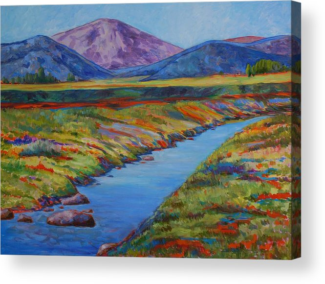 Colorful Landscpae Acrylic Print featuring the painting Colorful Colorado by Billie Colson