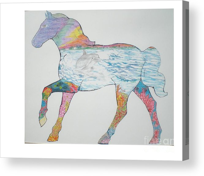 Portrait Of A Horse Design Acrylic Print featuring the drawing Dolpin Horse by Hal Newhouser