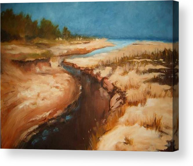 River Bed Acrylic Print featuring the painting Dry river bed by Nellie Visser