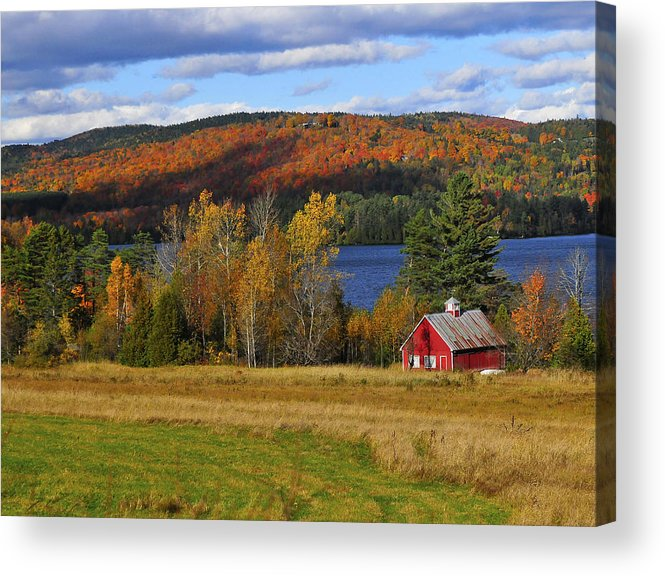 Vermont Acrylic Print featuring the photograph Fall Foliage by Mandy Wiltse