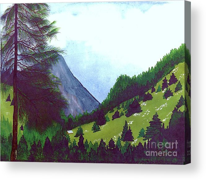 Original Painting Acrylic Print featuring the painting Heidi's Place by Patricia Griffin Brett