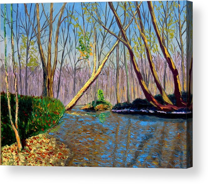 Creek Acrylic Print featuring the painting Mooresville November by Stan Hamilton