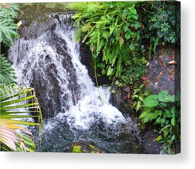Water Acrylic Print featuring the photograph Natural Beauty by Rana Adamchick