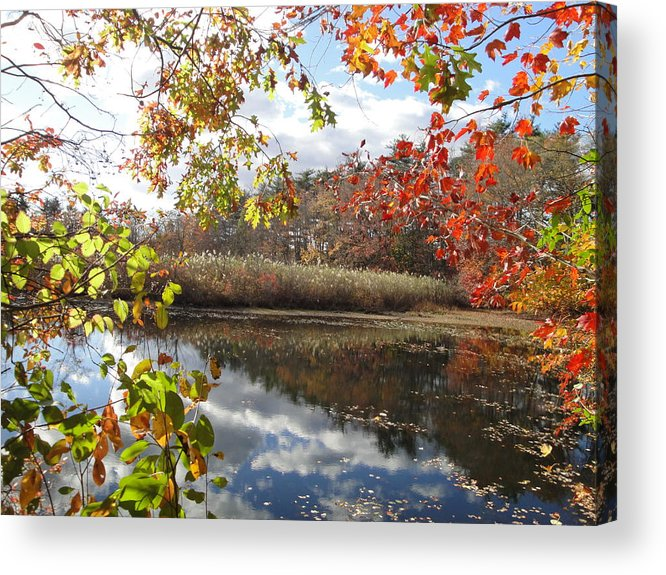Autumn Landscape Acrylic Print featuring the photograph Nature's Expression-18 by Leonard Holland