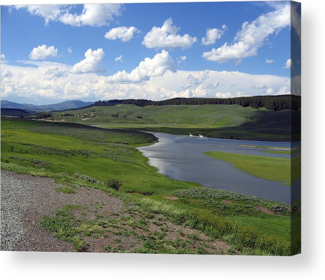 Lake Acrylic Print featuring the photograph Peaceful Lake at Yellowstone by Diane Wallace