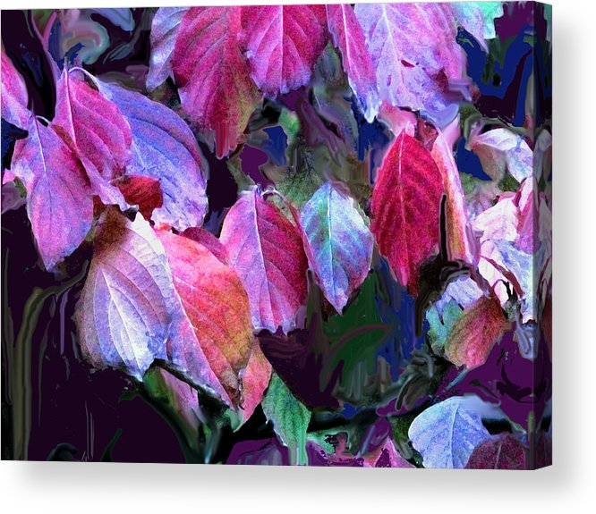 Leaves Acrylic Print featuring the photograph Purple Fall Leaves by Ian MacDonald