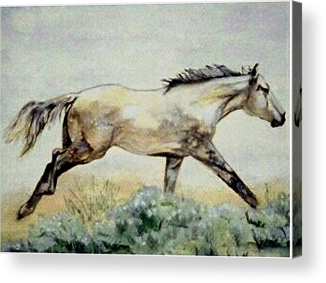 Quarter Horse Acrylic Print featuring the painting Sage Runner by Debra Sandstrom
