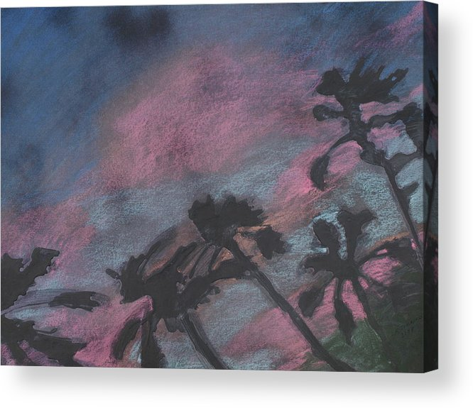 Contemporary Tree Landscapes Acrylic Print featuring the drawing San Diego palms by Leah Tomaino