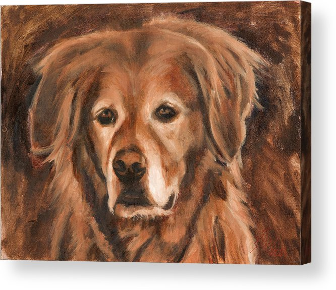 Golden Retriever Acrylic Print featuring the painting Silver and Gold by Billie Colson