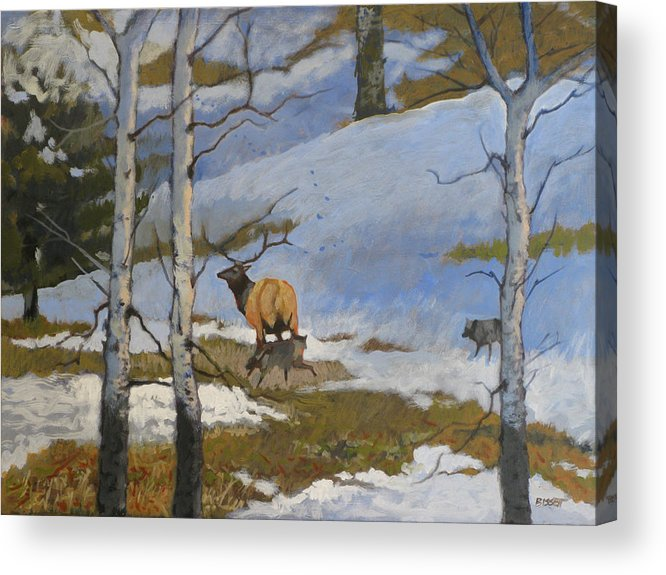 Elk Acrylic Print featuring the painting The Hunt by Robert Bissett
