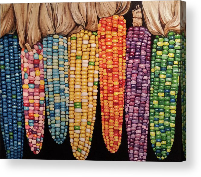 Zea Mays Glass Gem Corn Acrylic Print By Beth Waltz