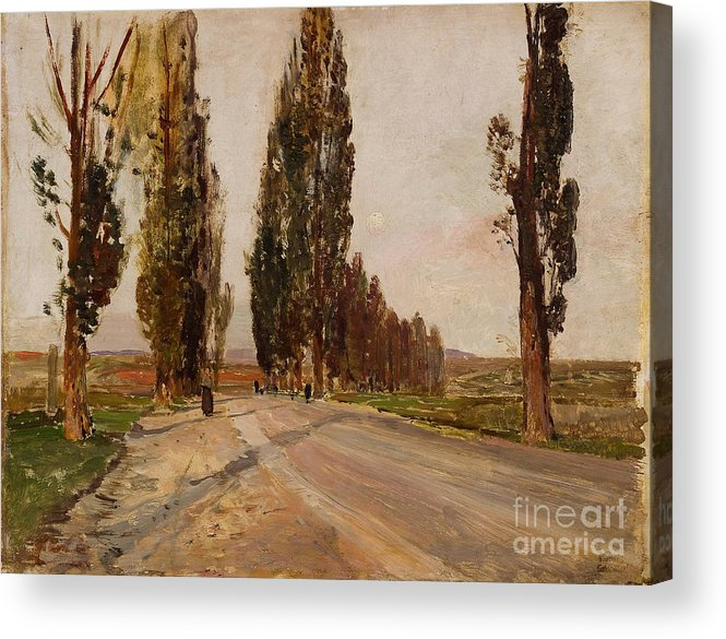 Painted Image Acrylic Print featuring the drawing Boulevard Of Poplars Near Plankenberg by Heritage Images