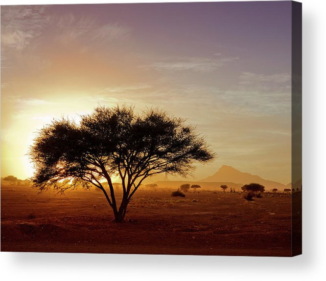 Tranquility Acrylic Print featuring the photograph Burning Desert by Bernd Schunack
