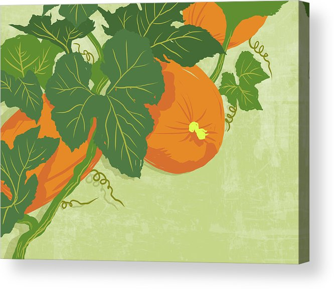 Part Of A Series Acrylic Print featuring the digital art Graphic Illustration Of Pumpkins by Don Bishop
