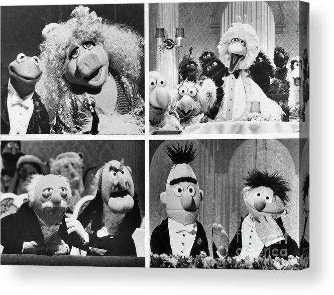 1980-1989 Acrylic Print featuring the photograph Various Muppets Scenes by Bettmann