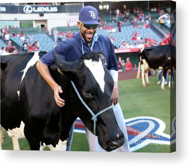 David Price Acrylic Print featuring the photograph David Price by Stephen Dunn