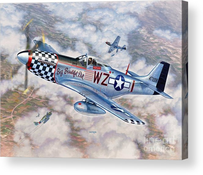 P-51 Mustang Acrylic Print featuring the painting Big Beautiful Doll by Stu Shepherd