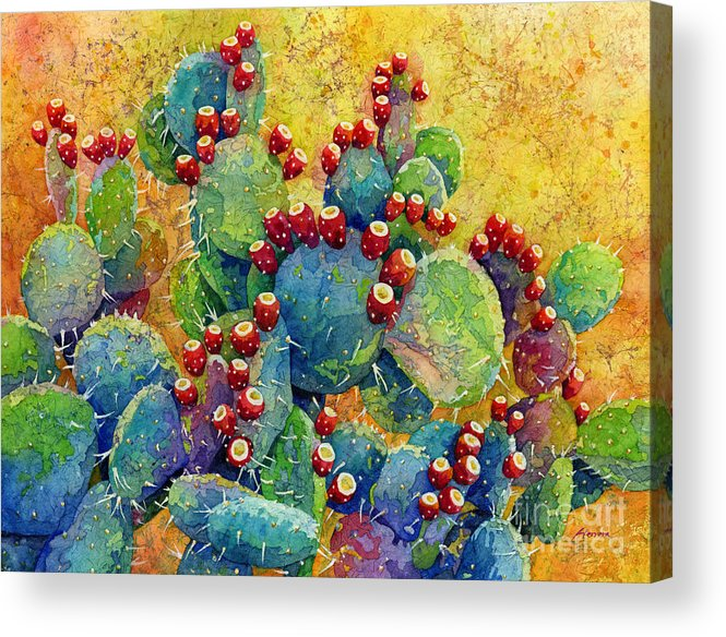 Cactus Acrylic Print featuring the painting Desert Gems by Hailey E Herrera