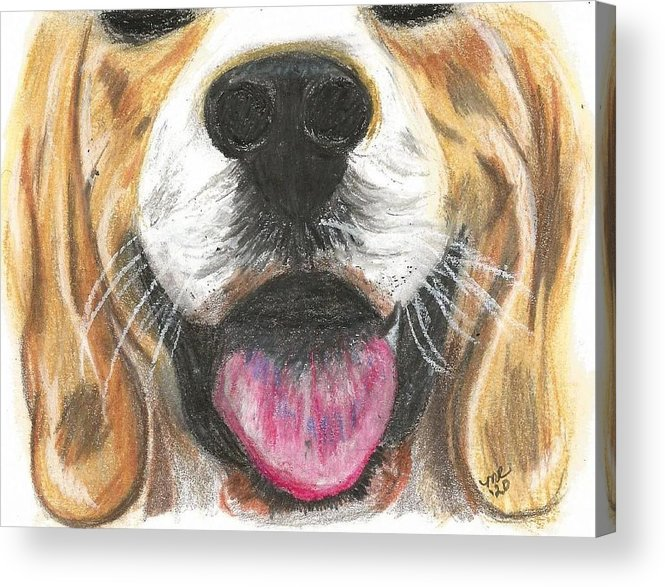Dog Face Acrylic Print featuring the painting Dog Face by Monica Resinger