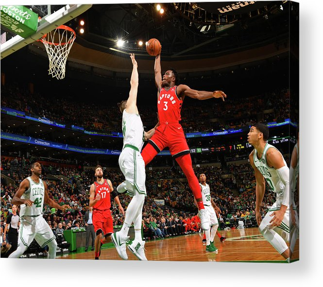 Nba Pro Basketball Acrylic Print featuring the photograph Og Anunoby by Jesse D. Garrabrant