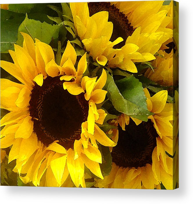 Sunflowers Acrylic Print featuring the painting Sunflowers by Amy Vangsgard