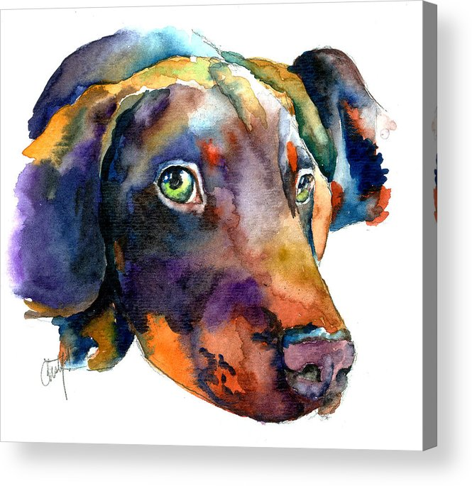 Doberman Acrylic Print featuring the painting Doberman Watercolor by Christy Freeman Stark