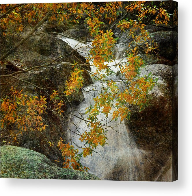 Water Acrylic Print featuring the photograph Memories by Tim Reaves