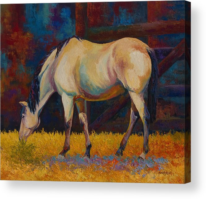 Horses Acrylic Print featuring the painting Buckskin by Marion Rose