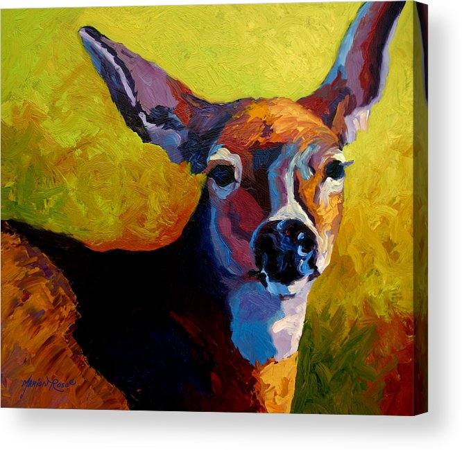 Western Acrylic Print featuring the painting Doe Portrait V by Marion Rose