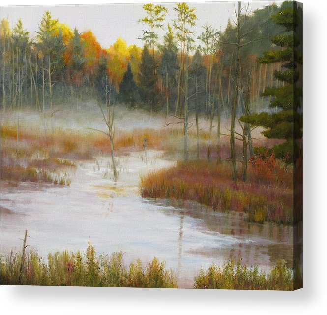 Landscape Acrylic Print featuring the painting Home of the Wood Duck by Barrett Edwards