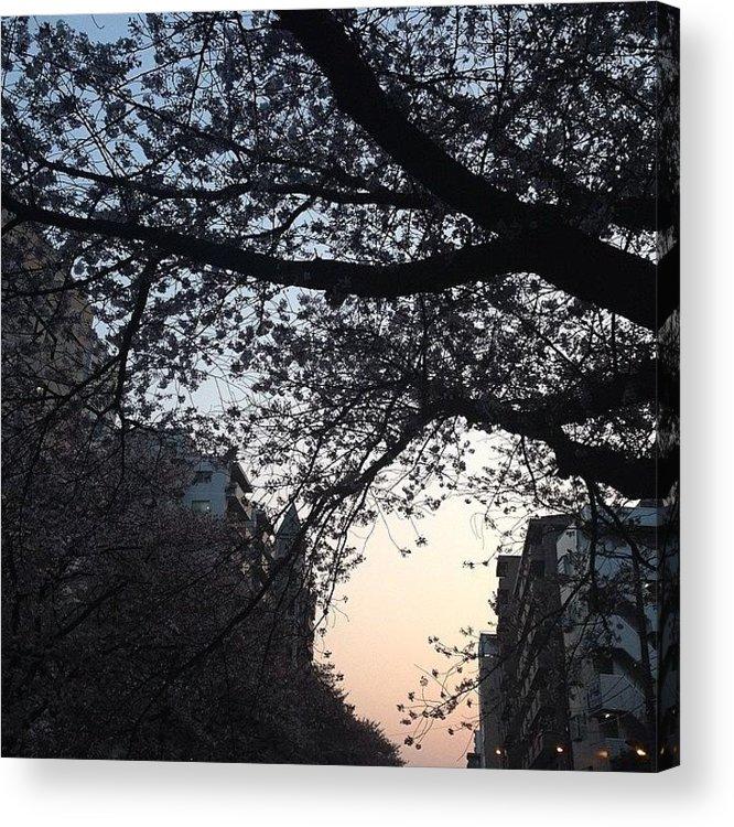 Landscape Acrylic Print featuring the photograph #landscape by Tokyo Sanpopo