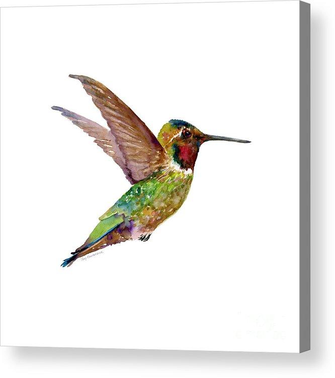 Bird Acrylic Print featuring the painting Anna Hummingbird by Amy Kirkpatrick