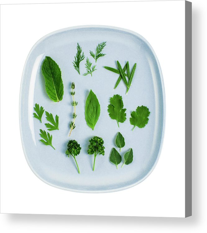 White Background Acrylic Print featuring the photograph Assorted Fresh Herb Leaves On Blue Plate by Creative Crop