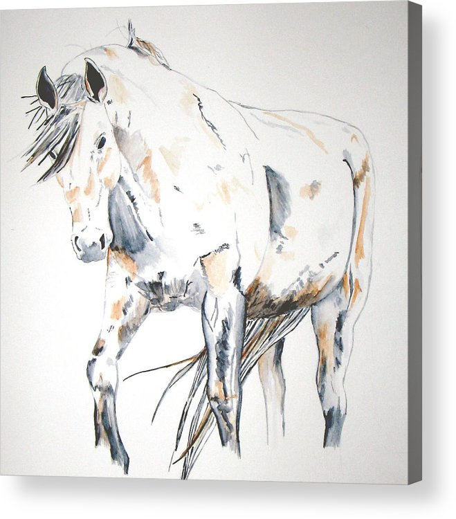 Horse Acrylic Print featuring the painting Beauty by Crystal Hubbard