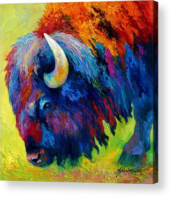 Wildlife Acrylic Print featuring the painting Bison Portrait II by Marion Rose
