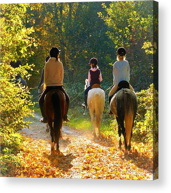 Horses Acrylic Print featuring the photograph Horseback riding in the autumnal forest by Matthias Hauser