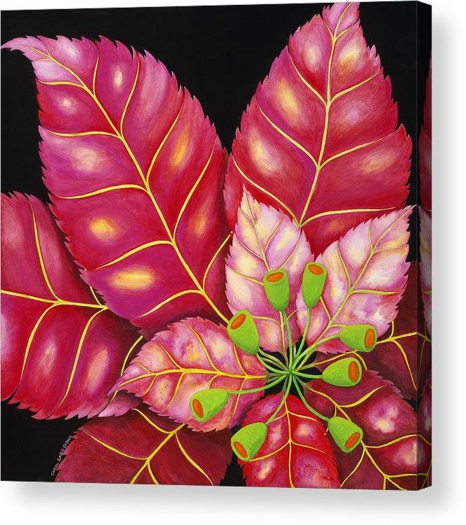 Acrylic Acrylic Print featuring the painting Poinsettia by Carol Sabo