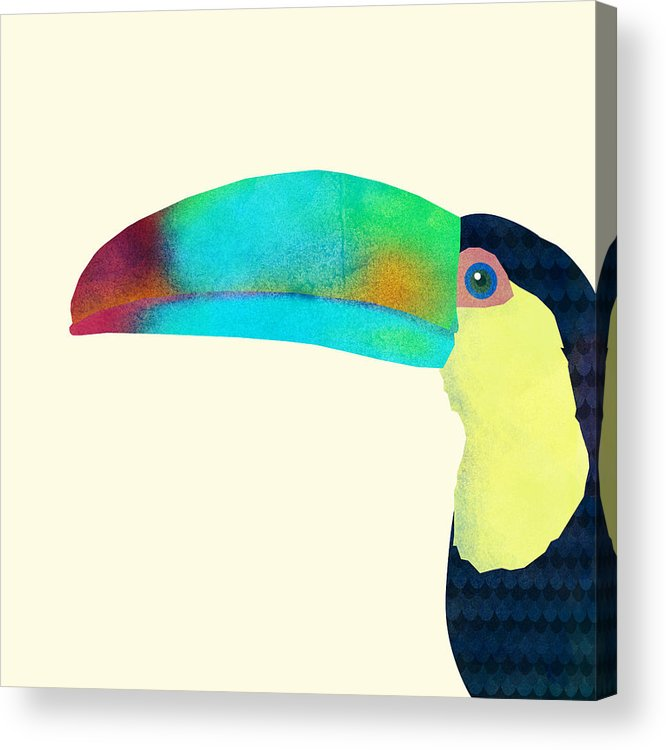 Bird Acrylic Print featuring the drawing Toucan by Eric Fan