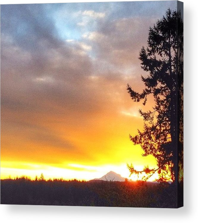 Sunshine Acrylic Print featuring the photograph Woke Up To The Most Beautiful Sunrise by Blenda Studio