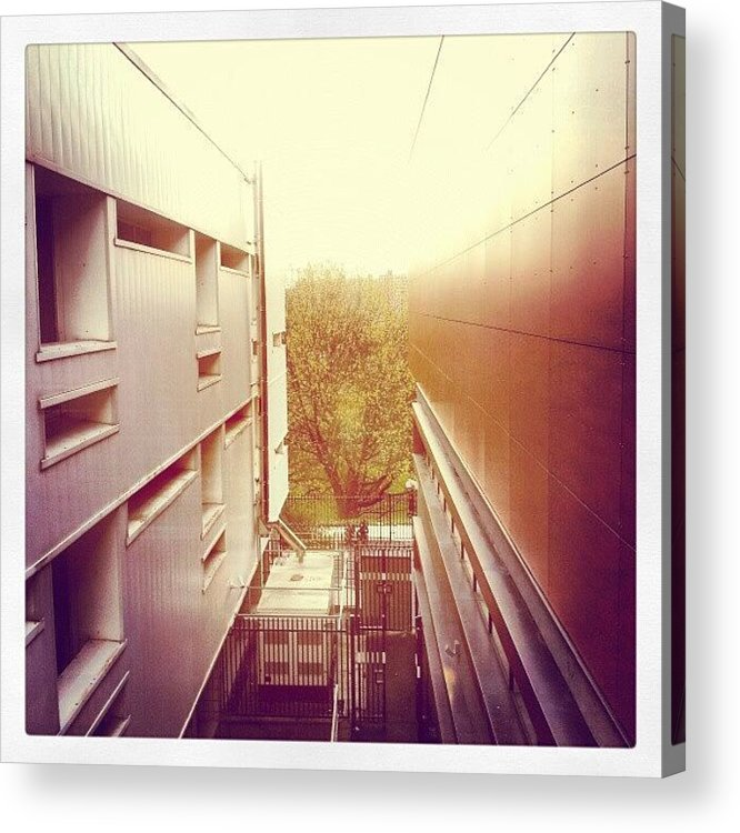 Salford Acrylic Print featuring the photograph Standing Between The Law School And by Abdelrahman Alawwad