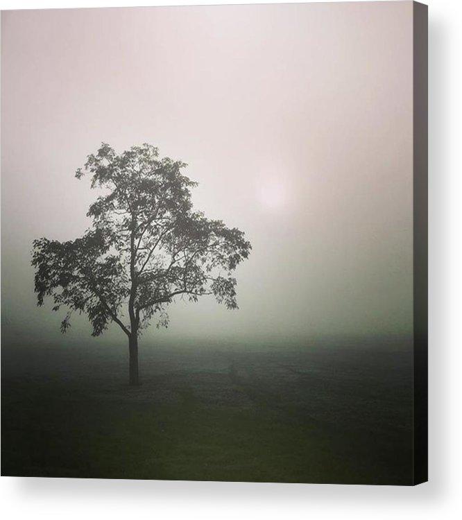 Fog Acrylic Print featuring the photograph A Walk Through The Clouds #fog #nuneaton by John Edwards